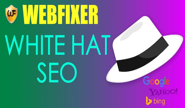 white hat seo india
